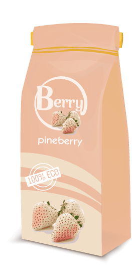 pineberry_توت_فرنگی_سفید_پاین_بری (4)