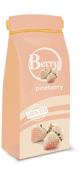 pineberry_توت_فرنگی_سفید_پاین_بری